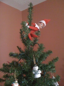Andy the Elf hides in a new place every day leading up to Christmas.